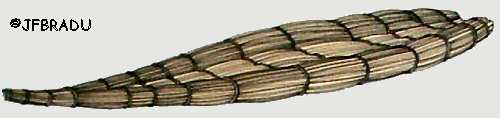 http://jfbradu.free.fr/egypte/LE%20NIL/LA%20NAVIGATION/bateau-papyrus.jpg