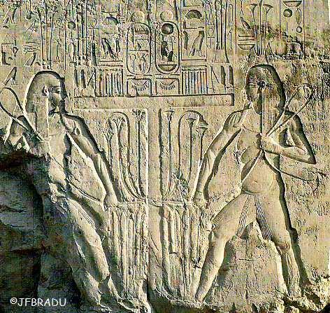 historique emblème chat égypte